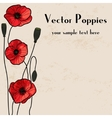 Poppies frame design vector image