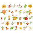 autumn floral set colorful floral collection vector image
