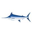 Blue marlin fis vector image vector image