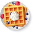 Breakfast Waffles Realistic Top View Image vector image vector image