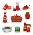 flat set of tomato food and drinks fresh vector image