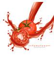 tomatoe splash realistic detailed 3d vector image