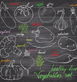 Vegetebles set Sketch with punpkin tomato eegplant vector image