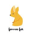 cute orange fennec fox on white background vector image