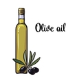 olive oil bottle with black olives vector image