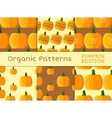 Organic seamless pattern collection Fresh vector image