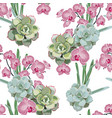 wallpaper pink orchid and green succulent vector image vector image