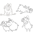 A set of pigs vector image vector image