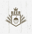 beer vintage label on grunge background vector image