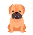 cute pug dog cartoon flat icon vector image vector image