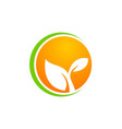 leaf ecology plant icon logo vector image vector image