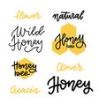 set honey lettering badges and calligraphy vector image vector image