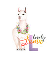 study animal abc alphabet letter l llama for kids vector image