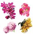 Spring Summer Flowers Set vector image
