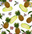 Pineapple pattern design vector image