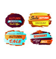 autumn discount best offer vector image
