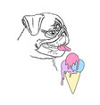 dog with colorful ice cream cute pug portrait vector image vector image