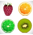 set of fruits icons vector image vector image