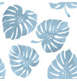 tropical leaves monstera on a white background vector image vector image