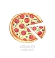 Watercolor pizza vector image vector image