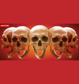 detailed graphic photorealistic human skulls set vector image