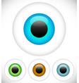 eyeball - eye icons vector image vector image