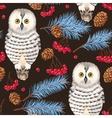 Seamless polar owl rowan and fir branches vector image vector image