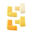 Set of Kind Cheese Cheddar Bri Camembert vector image vector image