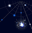 sapphire spider and web on black background with vector image