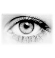 black halftone eye vector image vector image