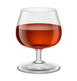 glass with red wine on white vector image vector image