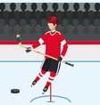 hockey player with uniform and professional vector image