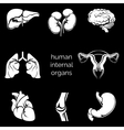 Internal human organs silhouettes vector image