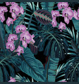 palm leaves and tropical pink orchid flowers vector image vector image