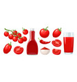 set tomatoes branch whole and slice flat vector image