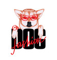 tshirt print fashion dog with dog and lettering vector image