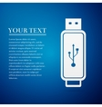 USB flash drive flat icon on blue background vector image vector image