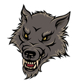 werewolf color vector image