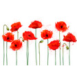 abstract beautiful background with red poppies vector image