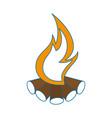 campfire icon image vector image