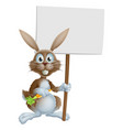 cartoon bunny rabbit carrot and sign vector image vector image