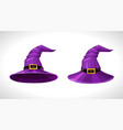 cartoon purple witch hats above and bottom view vector image vector image