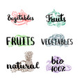 doodle handdrawn colored piles of fruits vector image vector image