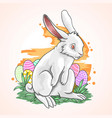 rabbit easter fullcolour vector image vector image
