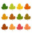 set of twelve autumn leaves vector image vector image