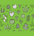 succulent boho seamless pattern vector image