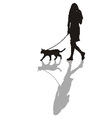 Woman with a cat on a leash vector image vector image
