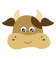 a fat cow or color vector image vector image