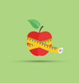 apple and centimeter flat vector image