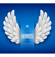 Artificial paper wings vector image